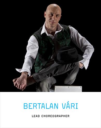 Bertalan Vári